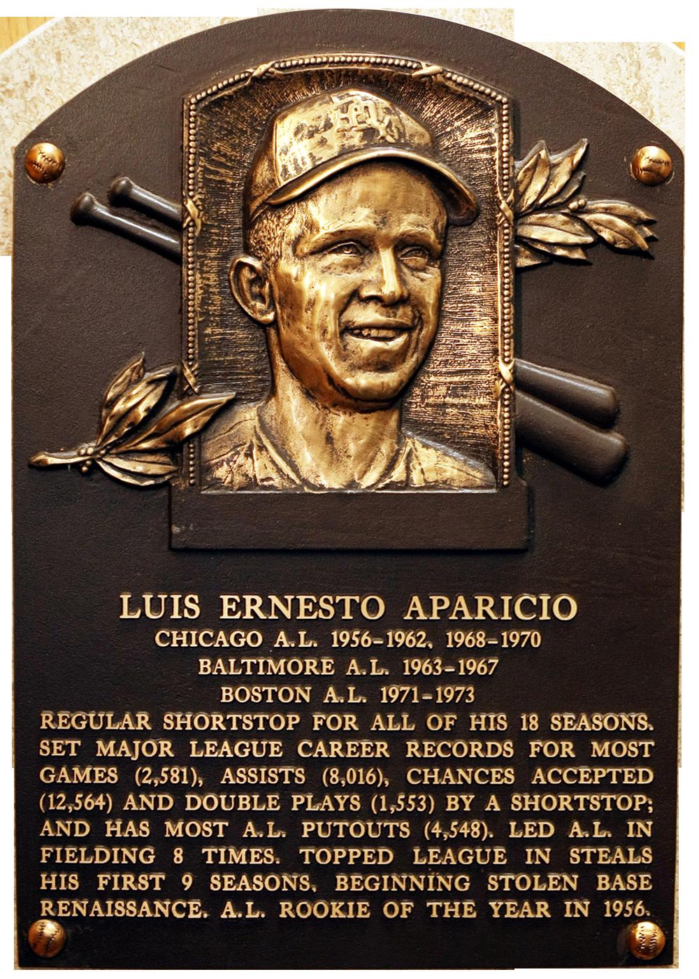 Aparicio luis baseball hall of fame for A star is born salon