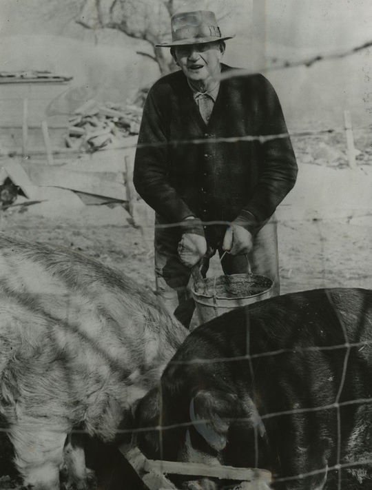 """Cy Young lived on the Benedum farm for years and helped out with chores, such as feeding pigs. <a href=""""https://collection.baseballhall.org/PASTIME/cy-young-photograph-1948"""">PASTIME</a> (National Baseball Hall of Fame and Museum)"""