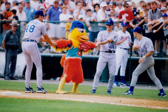 The San Diego Padres Chicken was unfortunately caught in the middle of a tug-of-war between Scott Service and Brian Barber.