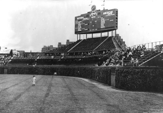 Wrigley Field of Chicago, featuring the ivy wall. BL-5362.85